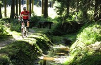 Mountainbiking am Schalker Graben